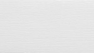 RENOLIT EXOFOL Белый 9152 (White 9152)