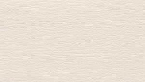 RENOLIT EXOFOL Кремовый (Cream White)