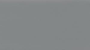 RENOLIT EXOFOL Сигнальный серый 083 (Signal Grey 083)